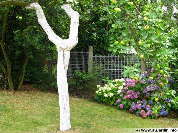 Le traitement hivernal des arbres