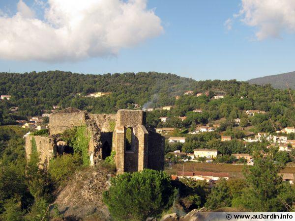 Ancienne église St Pons à Collobrière, capitale de la châtaigne en plein coeur du Massif des Maures