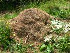 Le compostage en tas