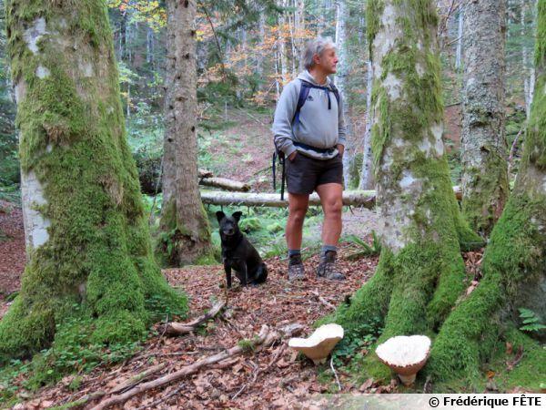 Un chercheur de champignons vigilant