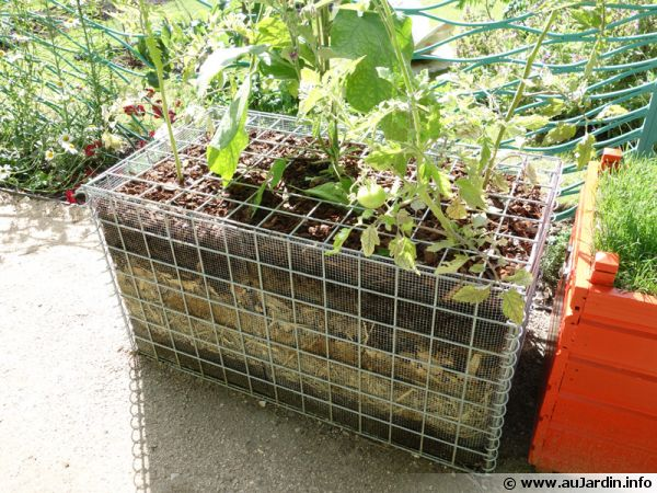La culture sur bottes de paille - Acheter de la paille pour jardin ...