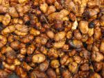 Souchet comestible, Amande de terre, Cyperus esculentus