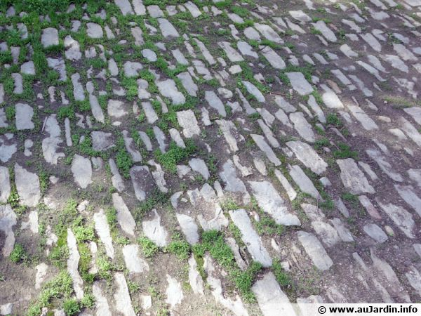 Un dallage composé de pierres installées sur la tranche