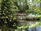 Les marais accessibles en contre-bas du domaine de Montauger