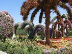 Dubai, le Miracle Garden et son allée de coeurs