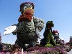Dubai, le Miracle Garden et ses personnages de Disney; Donald, Pluto et Minnie