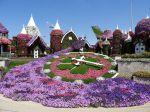 Le Dubai Miracle Garden, un jardin fleuri en région aride