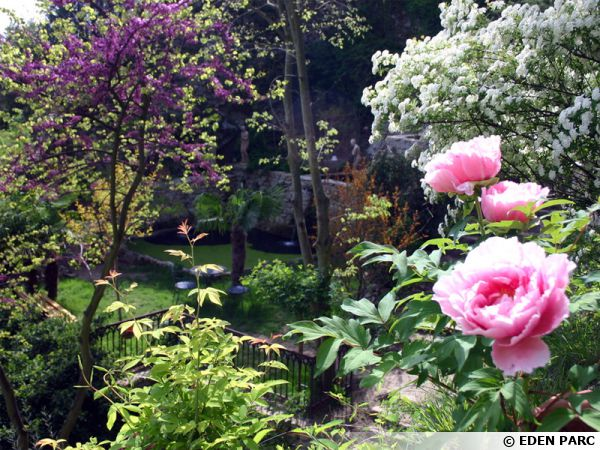Le jardin d'Eden à Tournon-sur-Rhône (07)