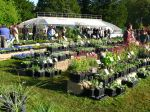 Les fêtes des plantes