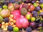 Des salades de fruits et de légumes pour garder la ligne