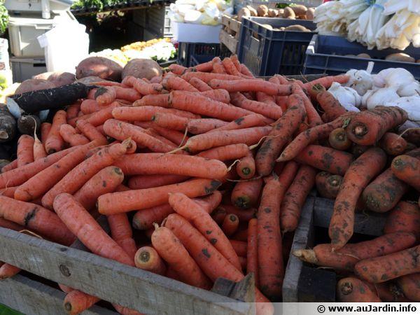 Choisissez des légumes et des fruits de saison