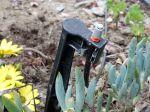 La micro aspersion pour votre jardin