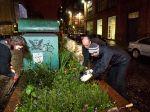 La guérilla du jardinage : place à la rébellion végétale !