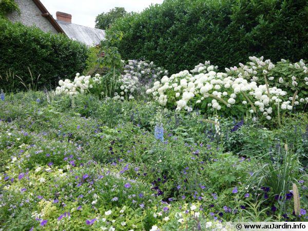 Un jardin opulent qui n'utilise pas de produits phytosanitaires