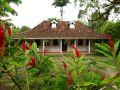 Le jardin de Balata en Martinique (97)