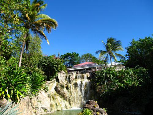 Le jardin botanique de deshaies en guadeloupe for Camping le jardin botanique limeray