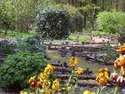 Le jardin botanique médiéval de la chevalerie de Sace