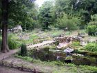 Vue du jardin botanique médiéval de la chevalerie de Sace