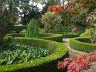 Le jardin botanique des montagnes noires (29)