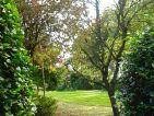 Jardin botanique des montagnes noires, vue 2