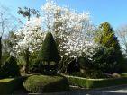 Jardin botanique des montagnes noires, vue 3