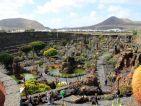 Le jardin de cactus de Lanzarote, vue de la carrière