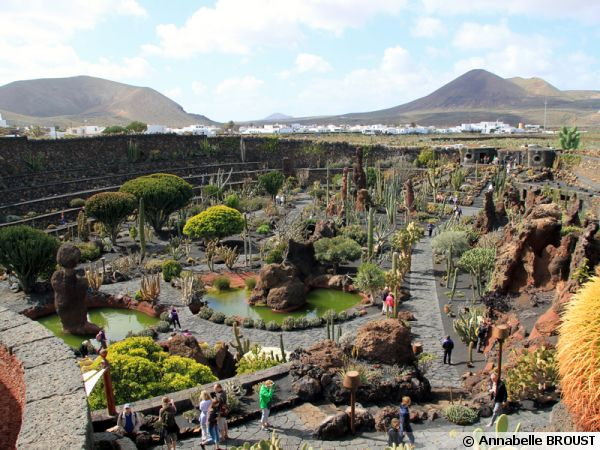 Le jardin de cactus de Lanzarote, vue d'ensemble sur la carrière