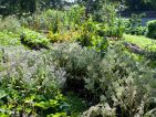 Le Jardin de Kerblouze, le potager