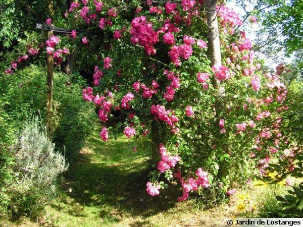 Le jardin de lostanges 19 for Le jardin 19