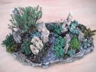 Jardin miniature, roche