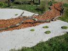 Le Jardin «Très mousse » par Marilyne LEVECQ, le cheminement