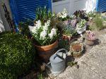 Le jardinage urbain