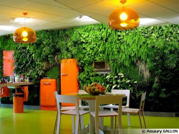 Mur végétal réalise par les jardins de Babylone