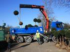 Les jardins cinématiques de Roland Garros, livraison des ifs produit par la pépinière RIPAUD (Vendée)