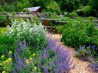 Les jardins écologiques de Terre Vivante en juillet