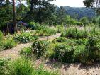 Le potager familial des jardins écologiques de Terre Vivante