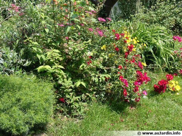 De la diversité au jardin et des massifs riches de fleurs