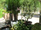 Luc ÉCHILLEY, Le jardin-Container, pots bordant une allée