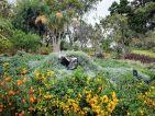 Madère, le Jardin botanique de Funchal