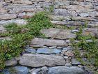 Un muret de pierres sèches