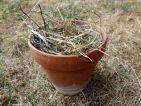 Mettre des herbes sèches dans un pot en terre cuite