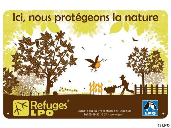 Création d'un refuge pour les animaux