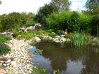 Vue sur une petite étendue d'eau du parc botanique Deau