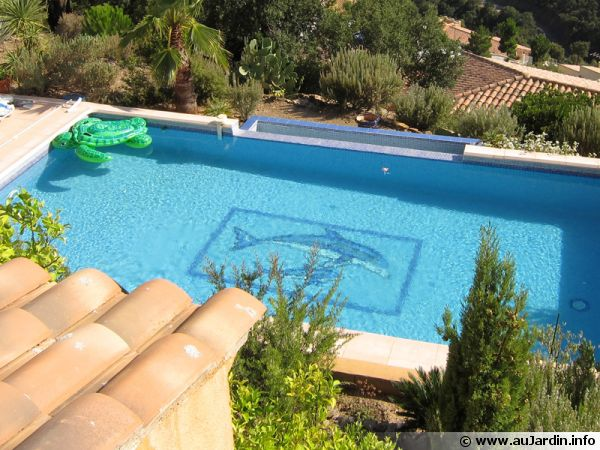 personnaliser sa piscine. Black Bedroom Furniture Sets. Home Design Ideas