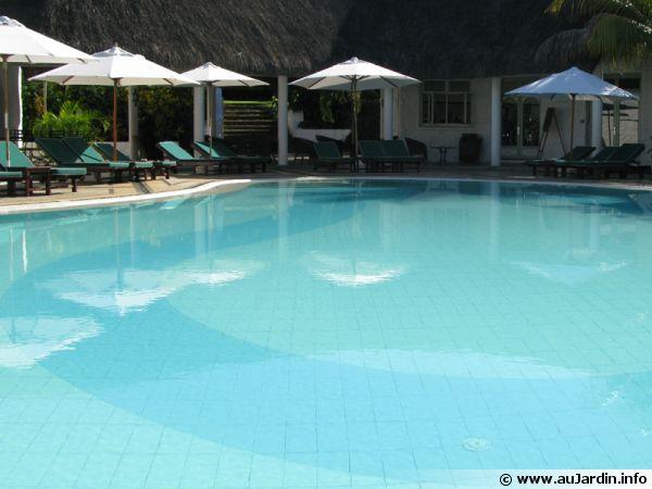 Une plage immergée est souvent du plus bel effet pour la piscine