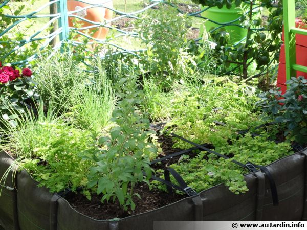 10 conseils pour r aliser un potager sur le balcon. Black Bedroom Furniture Sets. Home Design Ideas
