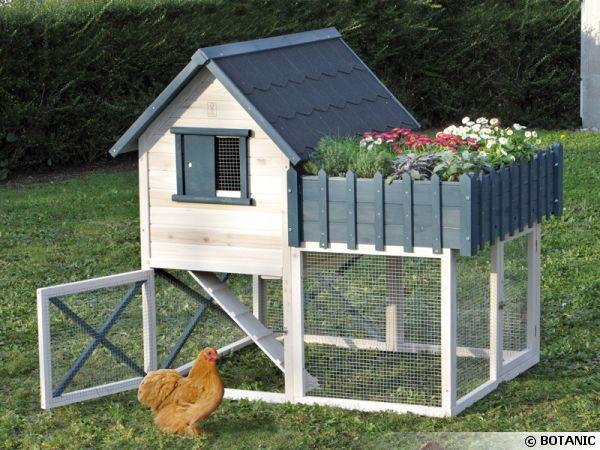 Enclos poules - Enclos a poule ...