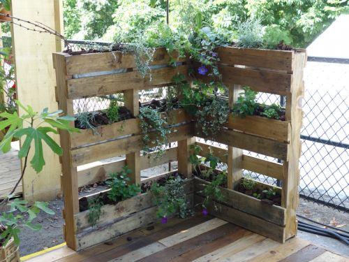 Les palettes au jardin for Construire un mur vegetal avec une palette