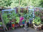 10 idées de récupération au jardin