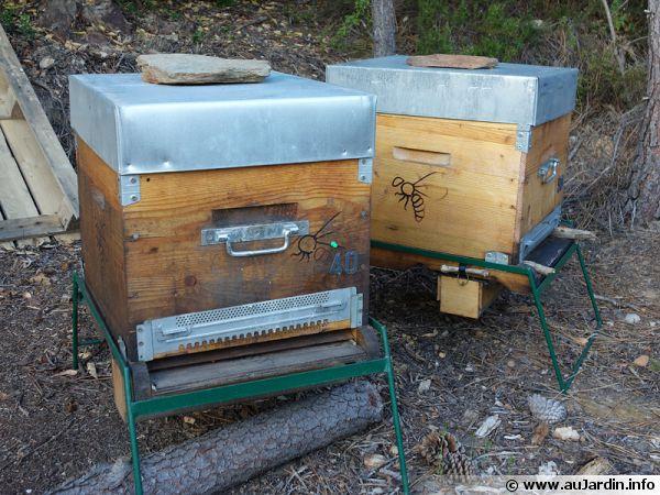 Des ruches dans le sud de la France